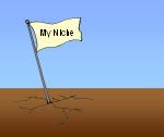blog-niche
