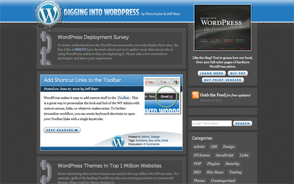 Digging into WordPress website