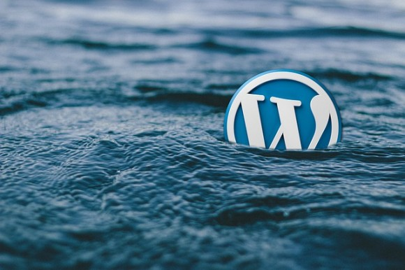 4 Of The Best WordPress Search Plugins