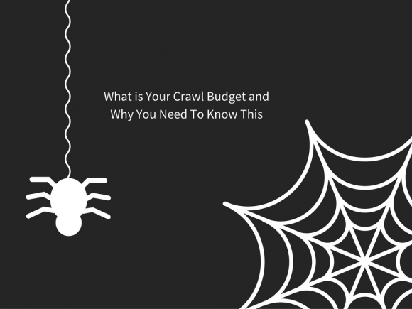 What is Your Crawl Budget and Why You Need To Know This